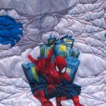 Spiderman Quilt