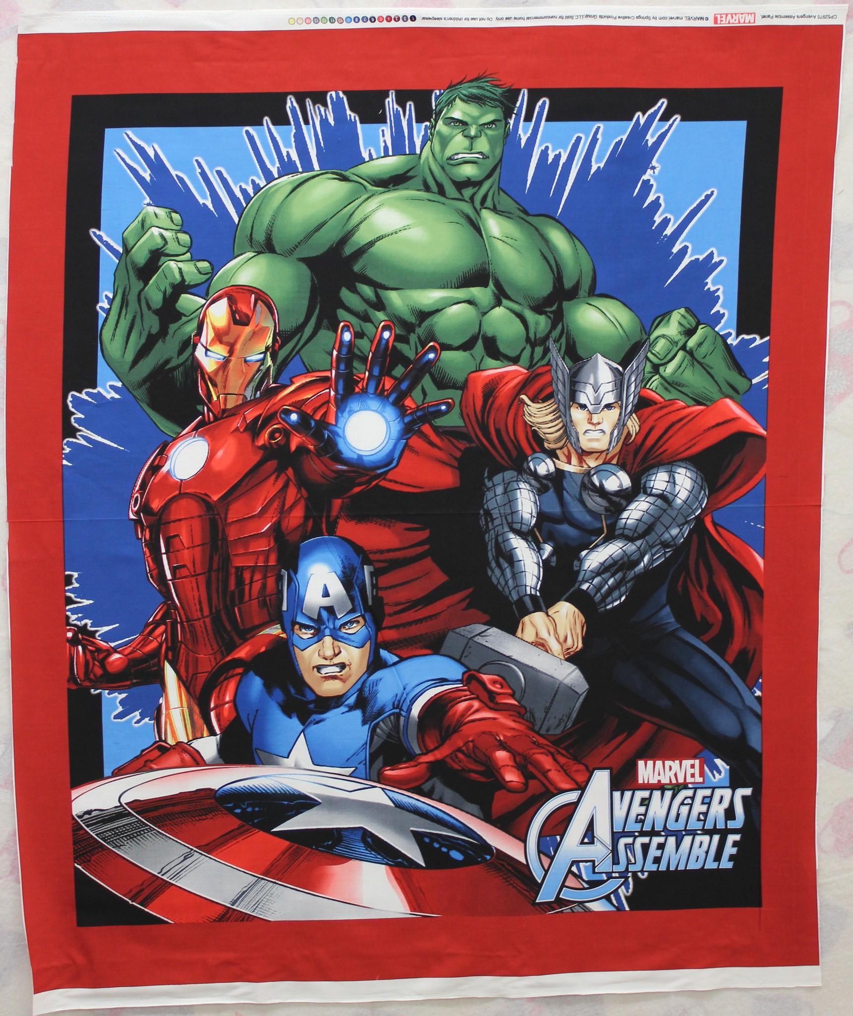 Avengers Panel