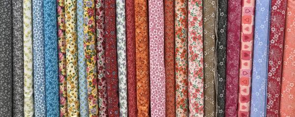 Colorful Calicos